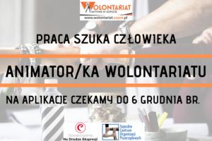 PRACA SZUKA CZŁOWIEKA   ANIMATOR/KA WOLONTARIATU W SCOPiW