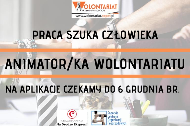 PRACA SZUKA CZŁOWIEKA | ANIMATOR/KA WOLONTARIATU W SCOPiW