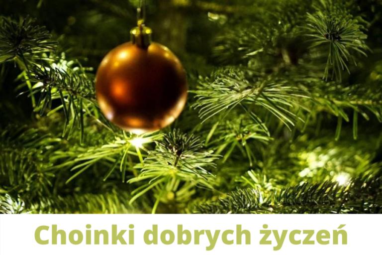 """""""Choinki dobrych życzeń"""" powędrują do samotnych sopocian"""